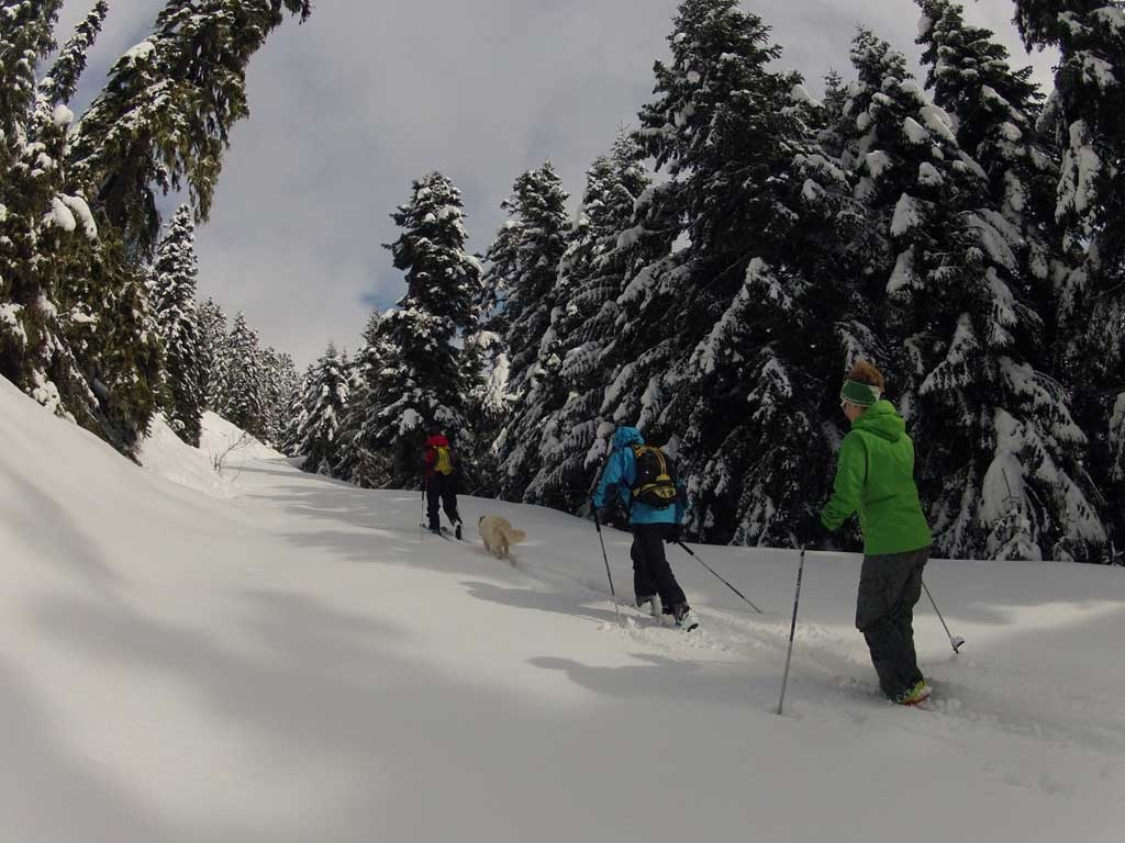 Winter sports, Pertouli ski center